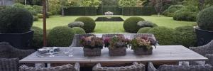 Große Terrasse + Garten